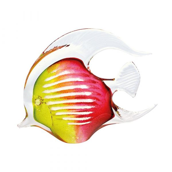 Agnes Angel Fish Lime Cherry